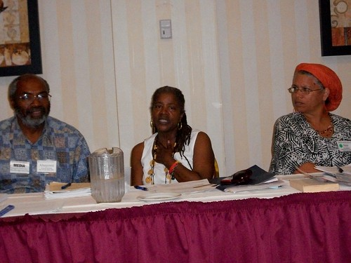 Abayomi Azikiwe, editor of the Pan-African News Wire, speaks on panel along with Nellie Hester Bailey of the Harlem Tenants Council and Ana Edwards of the Virginia Defenders at the Albany Peace Conference held July 23-25, 2010. by Pan-African News Wire File Photos