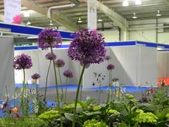 Gardening Scotland 2010