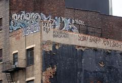 SETUP x RIME x READER (i_follow) Tags: new york city nyc urban art rooftop graffiti reader books read rancor setup xxx rime booker bookman oye yougogirl kcw ifollow boans reverendbenjamin youbarfkondos