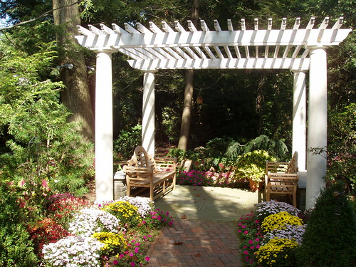 custom composite and wood pergola PA080073