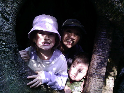 Anya, Aunt Jo & Callum in a Tree