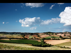Landscape: Wonderful Summer Dress (.Gianluca) Tags: blue trees summer italy orange cloud white holiday home nature colors yellow clouds rural canon landscape europe hill contax sunflowers land marche jesi collina ancona distagon 21mm hil manwork manuallens agricolture 40d natureholiday zeissdistagon21mmf28 theciccio alternatelens gettyvacation2010 lcollina