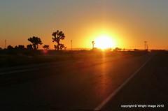 P1070191 (Kimberley Renee) Tags: california sunrise desert joshuatree socal lancaster antelopevalley 2010 kerncounty upperdesert stars4esther