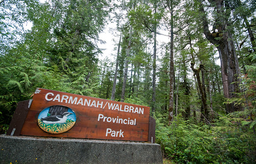 Carmanah Valley Rainforest