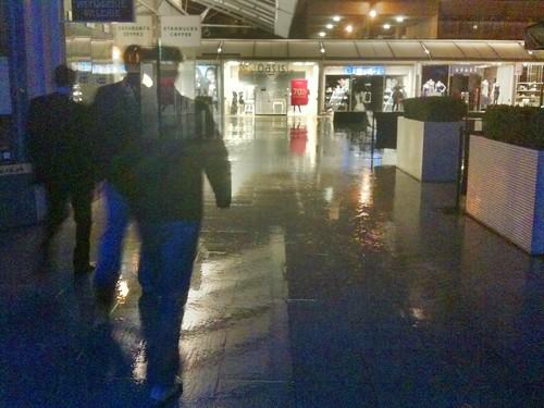 Deluge in the Brunswick Centre