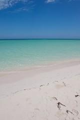 Beach (Jonas Witt) Tags: afszoomnikkor2470mmf28ged