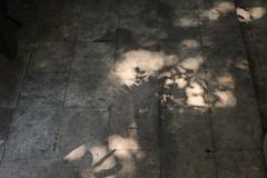 shadow () Tags: 50mm hotel nikon xiamen gulangyu af  14d   d700 nikonafnikkor50mmf14d 46howtel 46