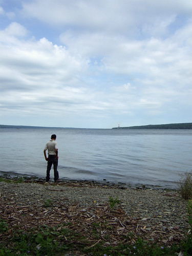 Cayuga lake shore