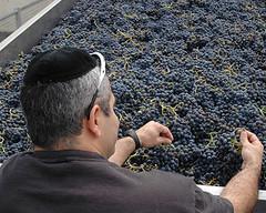 INV: Conferencia sobre Vinos Kosher y Orgánicos