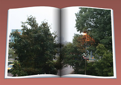 GoodMorning: 8 september 2010 (gill4kleuren - 11 ml views) Tags: morning sky people building tree window station clouds roc leiden office looking good working nederland ne netherland goodmorning centraal wold sunrishe