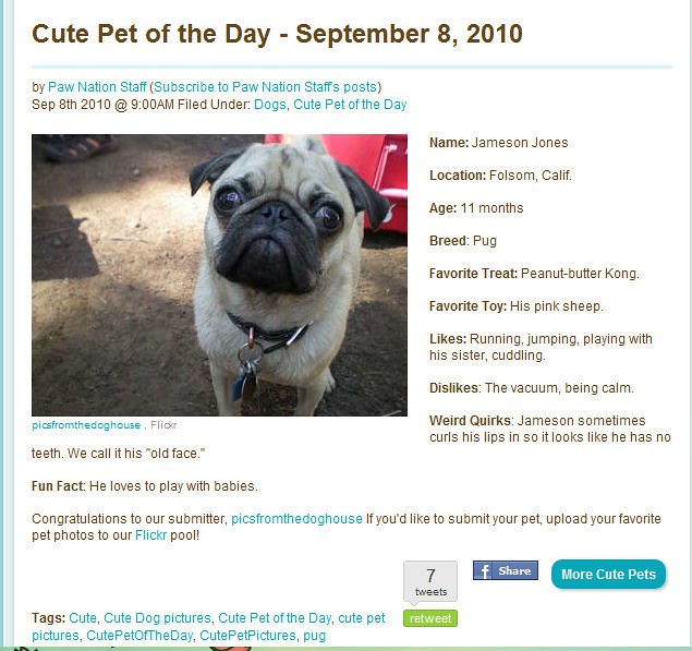 Pet of the Day Sept 8