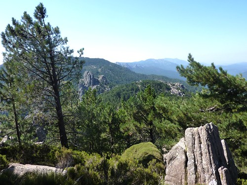 Dans la traversée Taculaghja - Punta Furcata : Castellucciu et la crête