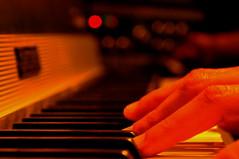 On keyboard (misunderstories) Tags: music keyboard piano sound recording synthetizer vincenzopisani