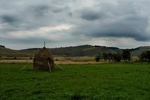 Transilvania4