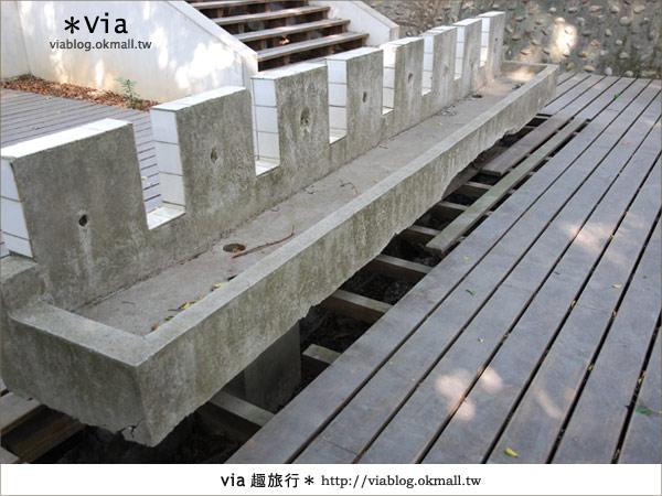 【彰化】彰化藝術高中~教室與森林結合的美麗校區11
