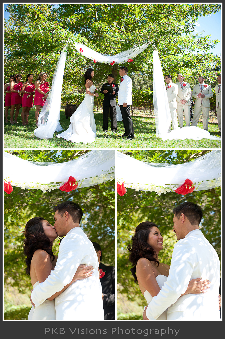 tiffa_braz_wedding_20.jpg