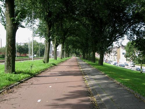 100-dyke-path-rotterdam