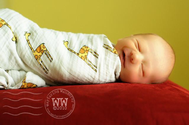 Baby James {Newborn}