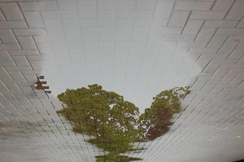 Under A Grey Sky