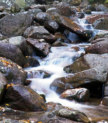 """A small water stream at White Mountains • <a style=""""font-size:0.8em;"""" href=""""http://www.flickr.com/photos/41711332@N00/5007853037/"""" target=""""_blank"""">View on Flickr</a>"""