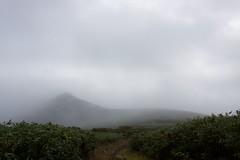 霧の中から現れたピーク