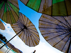 Beach Chair Umbrellas
