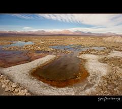 Salar de Atacama [1535] (josefrancisco.salgado) Tags: chile nikon desert desierto nikkor salar cl sanpedrodeatacama salardeatacama saltflat desiertodeatacama atacamadesert repúblicadechile reservanacionallosflamencos republicofchile d3s 2470mmf28g iiregióndeantofagasta provinciadeelloa