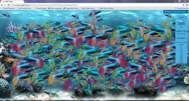 FishTank1000_Chrome6_0_472_62_Beta
