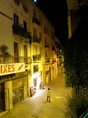 IMG_1851 (perladipace) Tags: barcelona street night moo1