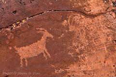 Goat (W9JIM) Tags: goat w9jim petroglyph rockart littleblackmountain