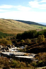 NorthGlenSannoxTowardsSannox (Assja) Tags: autumn mountains fall water leaves forest landscape golden scotland highlands rocks stream heather herbst glen hills naturereserve valley bracken rowan isleofarran birches indiansummer birchtree schottland wirbel herbststimmung ruska naturreservat hochland wildbach zauberwald birkenwald farnkraut heidekraut ebereschen torfmoor remarkabletrees feenwald wildpfad thebrackenisgoldinthesun northendofarran subarktischestimmung