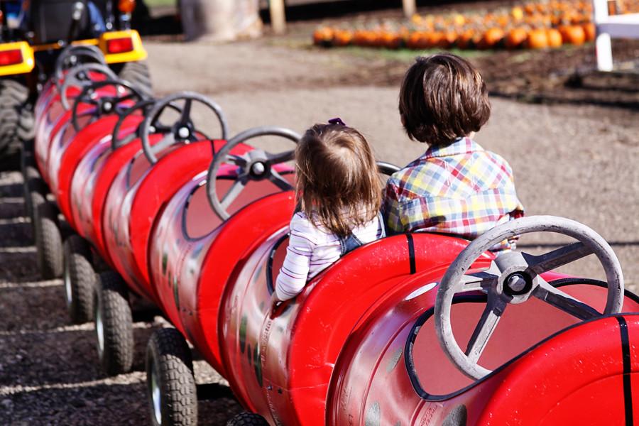 Rader farm 2010 (16))blog
