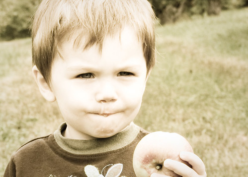 applepicking10-12
