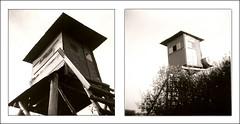 Les cabanes de chasse (joel lintz) Tags: bw white black 120 diptych noir 4x4 nb diana alsace neopan clone diptyque et blanc acros debonair