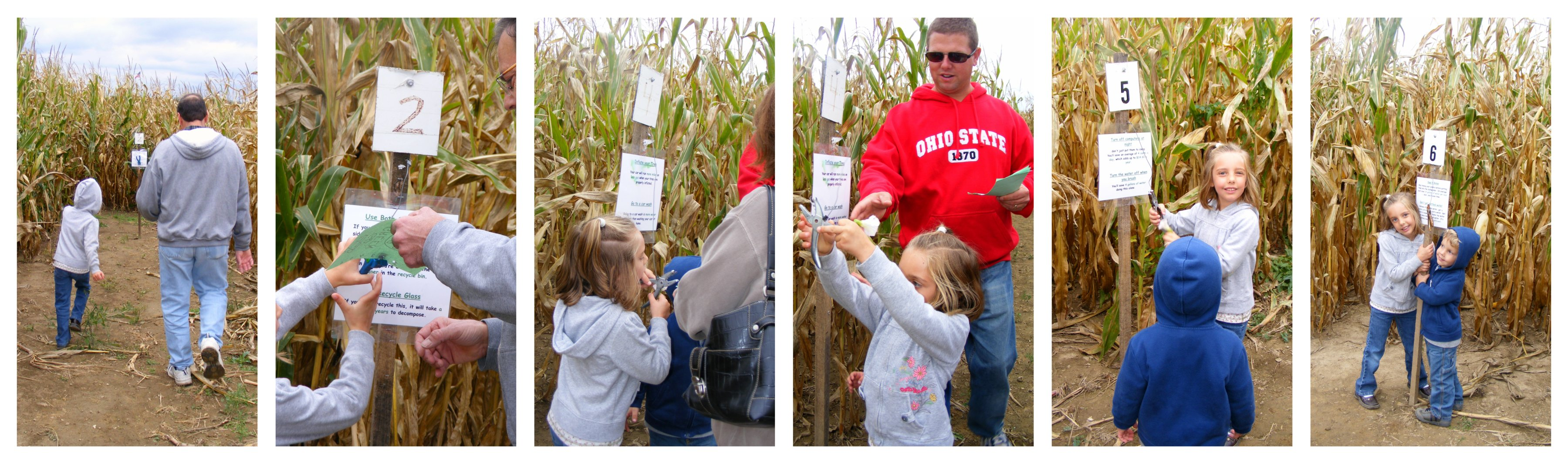 corn maze number collage