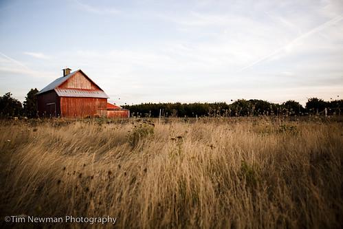 Late summer barn