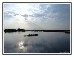 Nella-Laguna (Mauro Rado) Tags: venice italy lagune laguna acqua venezia controluce veneto veneta