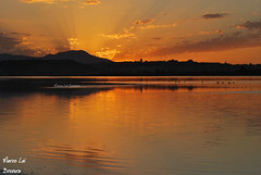 Sardinia Reflex (bruvura) Tags: sardegna sunset parco tramonto natura acqua riflessi molentargius stagno bruvura marcolai sardiniareflex