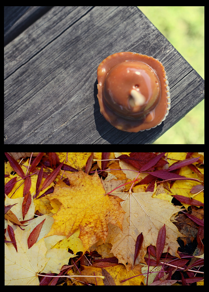 fall dip