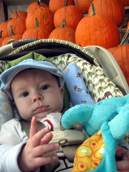 KFP with Pumpkins - 3