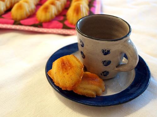 Madeleines zum Tee oder Kaffee?