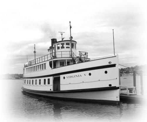 v5 docked bw