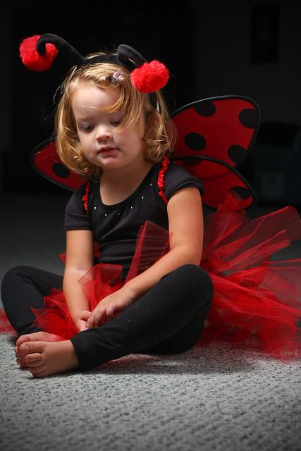 Ladybug Sitting