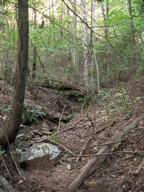 dry-creek