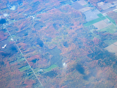 Fall Foliage, South of Montreal