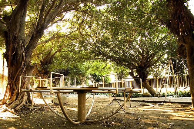 海邊小學校景隨拍