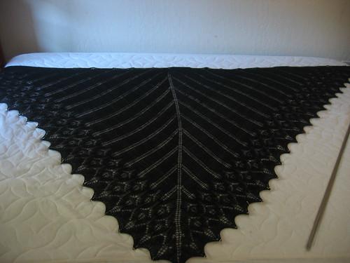 Black Icarus
