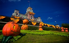 Happy Halloween from the Magic Kingdom (Don Sullivan) Tags: world railroad flowers party vacation holiday halloween station orlando magic pumpkins entrance kingdom disney waltdisneyworld walt kissimmee themepark magickingdom imagineering disneypics canonef1635mmf28liiusm disneyphoto canoneos5dmarkii disneyimages