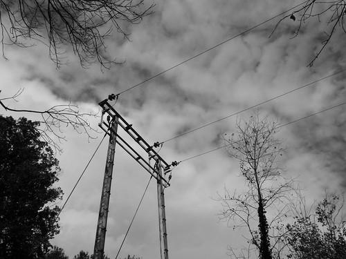 pylons b.w
