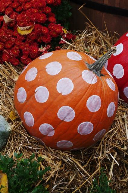 Spot Pumpkin